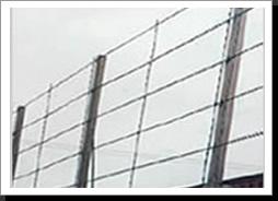 Razor Wire Fencing2